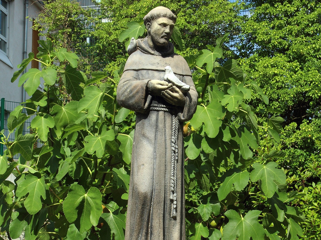(15) Franz-Statue